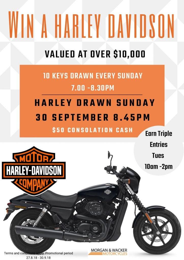 Harley Promo Poster(3)